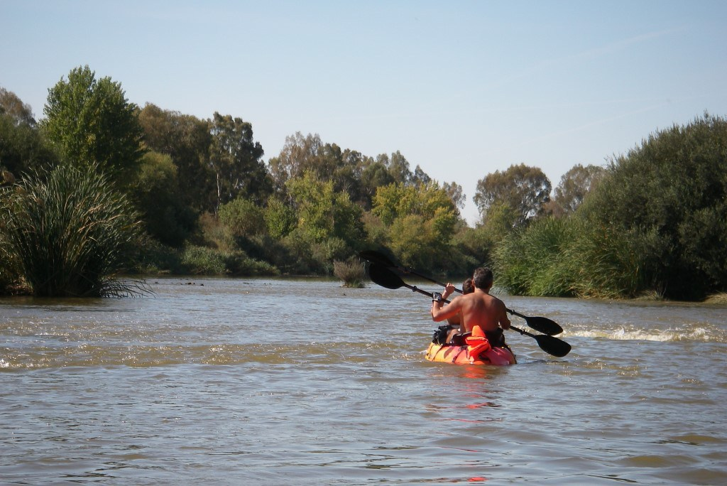 Paddle in Guadiana river